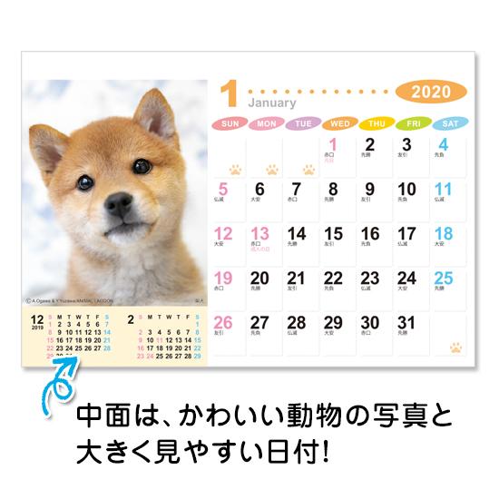 ラブリーフレンズ(犬・猫) 卓上カレンダー フルカラー名入れシール