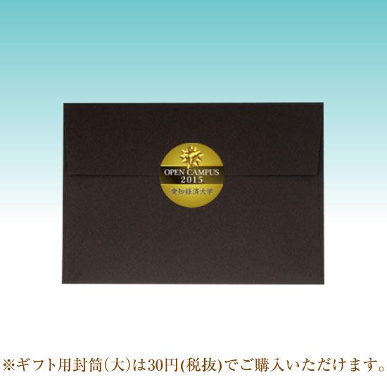名入れUSBメモリ:カード型USBメモリ(アルミタイプ)画像11